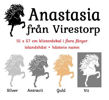 Klisterdekal paket 4 Islandshäst + text 15 x 57 cm  populära på transporten !