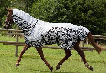 Pfiff flugtäcke - Zebra
