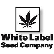 White Label Super Skunk Feminized 5-pack.