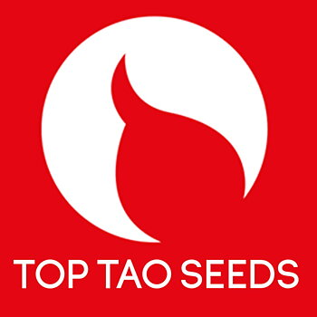 TOP TAO AUTO mix VOL 2 REGULAR 15p