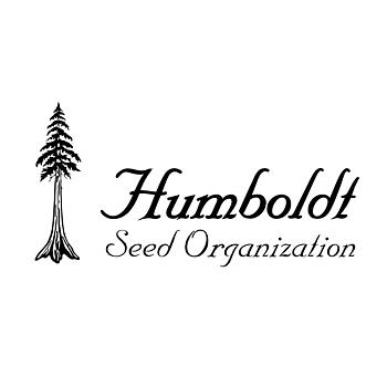 Humboldt Seeds Dedoverde Haze, Feminized, 5-pack