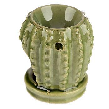 Aromilamppu, Kaktus vaaleanvihreä