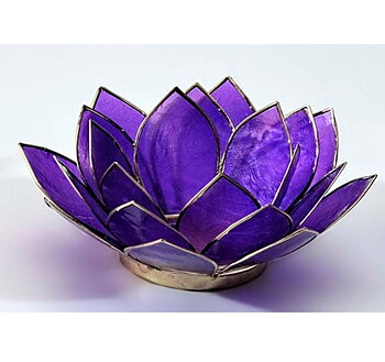 Lotuslykta - samtliga chakrafärger