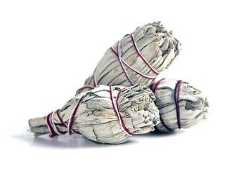 Vit Salvia - rökelsebunt (flera storlekar) från