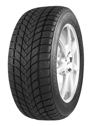 195/65 R15 91H MASTER-STEEL WINTER + IS-W
