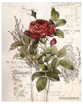 JdL Transfer paper - Botanical Rose