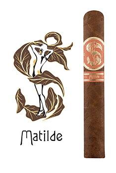 Matilde Quadrata Robusto