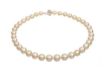 Söderhavspärlhalsband med guldskimrande pärlor