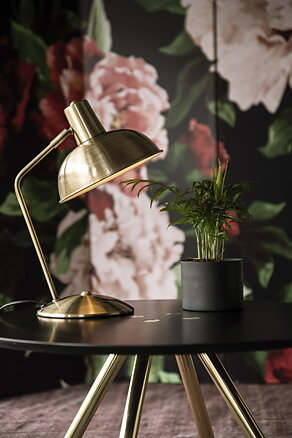 Table lamp 'Hood' Borstad mässing