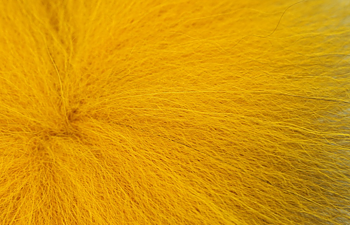 Futurefly Golden Fox Banana Yellow