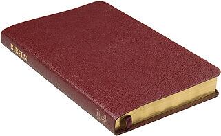 Folkbibeln 2015 slimline röd