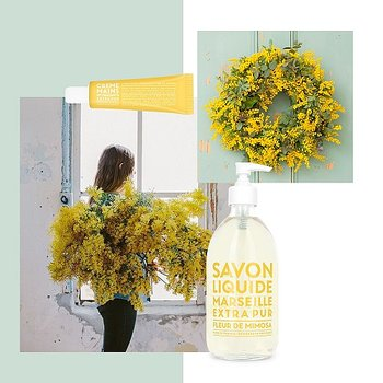 Flytande tvål, Campagnie de Provence - Mimosa flower