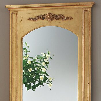 Spegel med blomdekor Guld