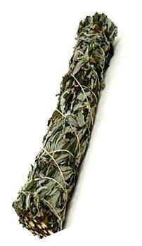 Svart Salvia - Bunt- - 15cm