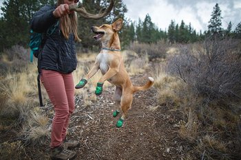 Ruffwear Summit Trex Dog Boots x 2