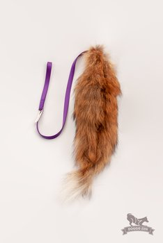 Fox Tail Chaser