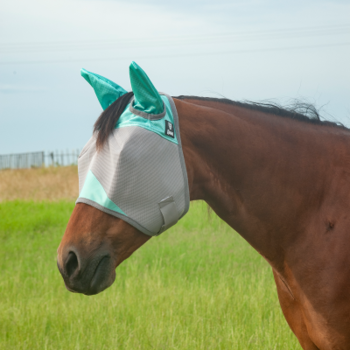 Fly mask Std Mint
