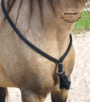 Halsring / cordeo Brockamp (tre storlekar), svart