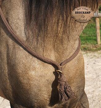 Halsring / cordeo Brockamp (tre storlekar), brun