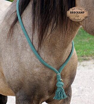 Halsring / cordeo Brockamp (tre storlekar), grön