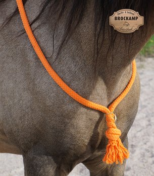 Halsring / cordeo Brockamp (tre storlekar), orange