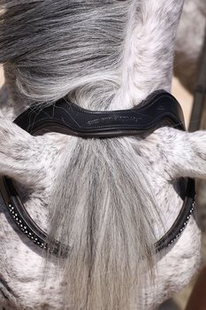 Barefoot® Bitless Bridle Contour Jewel