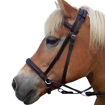 F.R.A® Bitless Bridle Indy