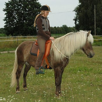 Linda Tellington-Jones Halsring (Shettis - Ardenner)