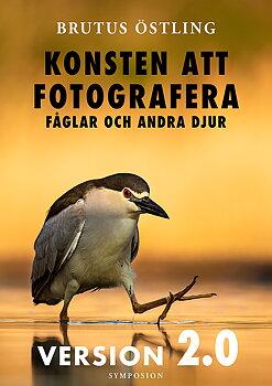 Brutus Östling - Konsten att fotografera fåglar och andra djur : version 2.0