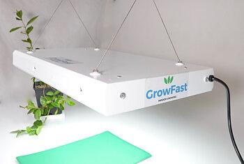 GrowFast T5-96W  KAMPANJ