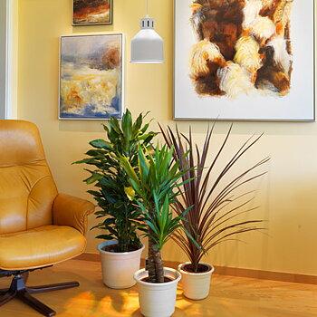 Växtlampa standard 18W