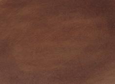 Narvsvärta Leather's Choice - 250 ml.