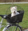 Cykelkorg pil med dyna och galler