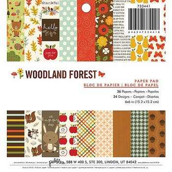 AMERICAN CRAFTS  -Pebbles - Woodland Forest Collection - 6 x 6 Paper Pad