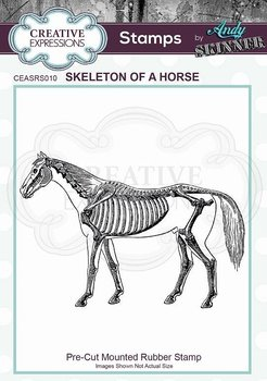 CREATIVE EXPRESSIONS Rubber Stamp by Andy Skinner Skeleton of a Horse