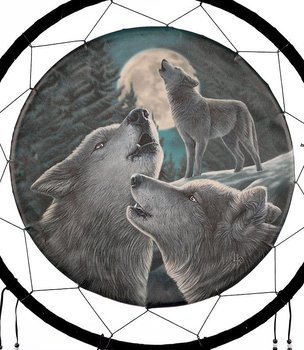 Medicine Shield - Wolf Song by Lisa Parker, 60cm
