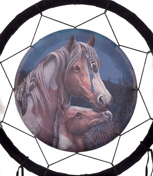 Medicine Shield - Apache by Lisa Parker, 33cm