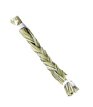 Sweetgrass, 10cm