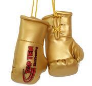 Mini boxhandskar Topten Kickboxing, Guld