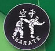 Broderat Märke Karate Kick