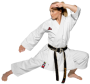 WKF Hayashi Tenno Yama Karate Kata GI Vit