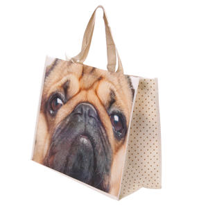 Shoppingbag mops