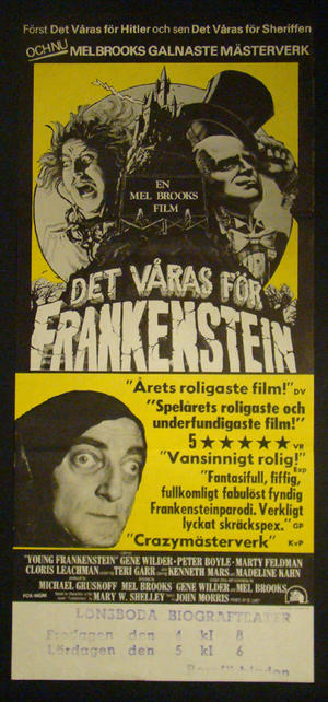 YOUNG FRANKENSTEIN (GENE WILDER, MARTY FELDMAN)