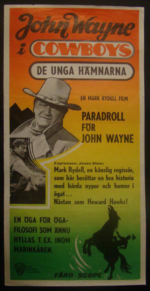 DE UNGA HÄMNARNA (JOHN WAYNE)