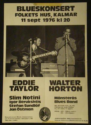 Blues concert - Folkets hus Kalmar 1976