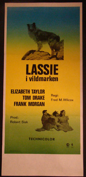 COURAGE OF LASSIE (ELIZABETH TAYLOR )