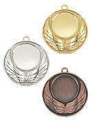 Medalj D19