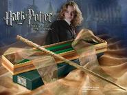 Hermione Granger's stav