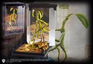 Magical Creatures Bowtruckle