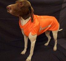 Skräddarsydd skyddsväst för din hund